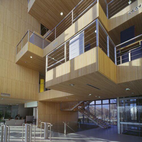 Bamboe wanden en plafonds in het gebouw van Rijkswaterstaat