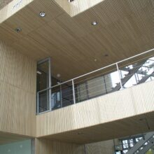 Bamboo walls and ceilings in building Rijkswaterstaat
