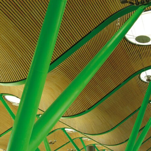 Bamboo ceiling in Madrid