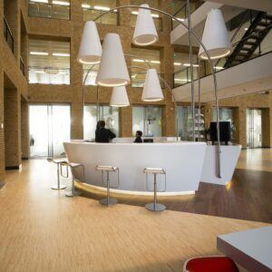 Bamboo flooring in Rabobank office