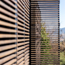 Bamboo x-treme beams Casa Valle Escondido