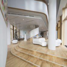 bamboo stairs in AkzoNobel Center Amsterdam