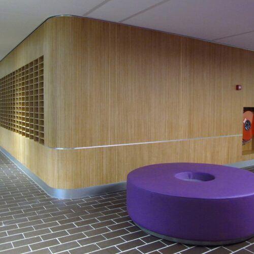 Bambus Wandverkleidung wurden in Universität im Amsterdam verwendet.