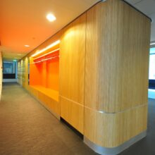 Bamboo wallcovering in University Amsterdam