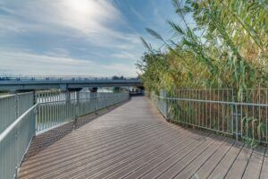 Decking in bamboo presso Ussishkin Bridge, Tel Aviv