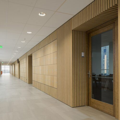 Bamboo flooring, wall covering and terrace in STC Campus Waalhaven