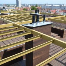Bamboo rooftop on Residential building Braunhubergasse 28